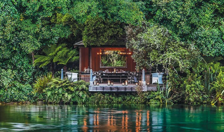 Dine under a natural canopy in New Zealand