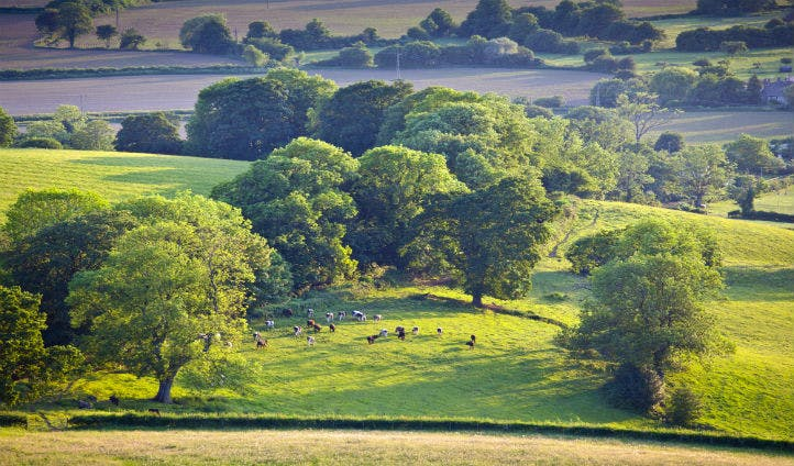 The stunning Cotswolds landscape