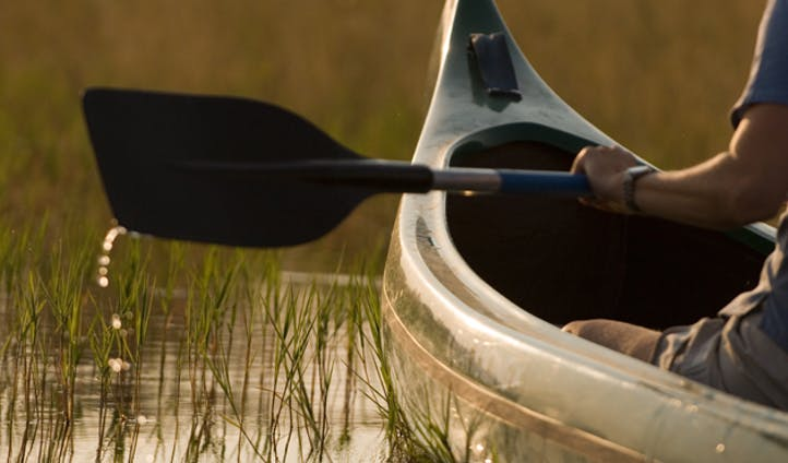 canoe on the selinda canoe trail