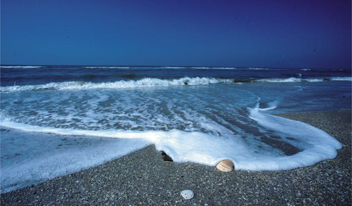 texas's gulf coast