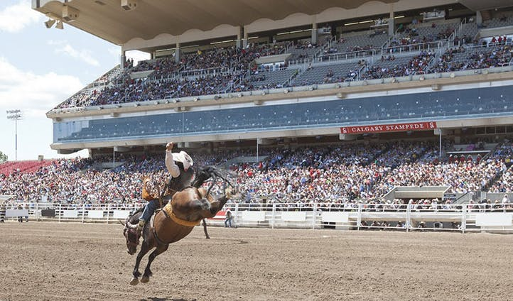 Experience the iconic Calgary stampede