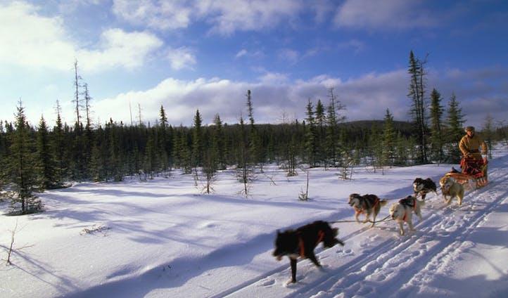 Wintertime in Ontario