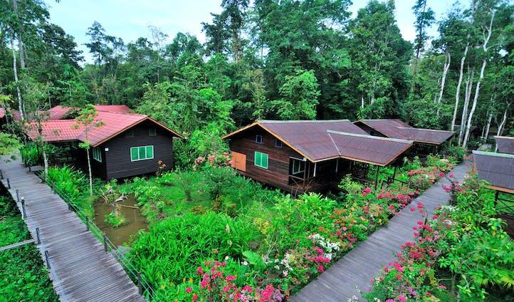 Abai Jungle Lodge