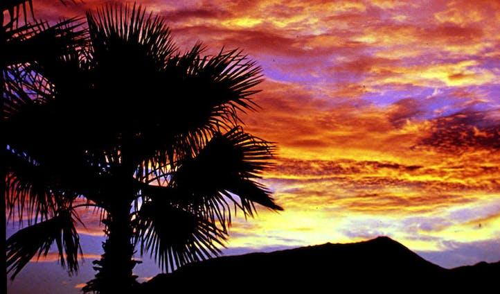 Palm Springs at dusk | Black Tomato