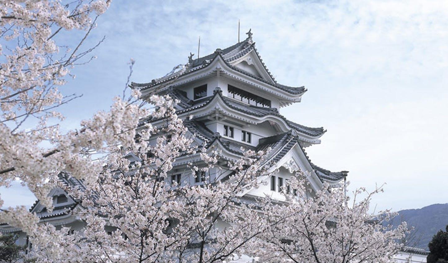 Kawashima Castle Tokushima
