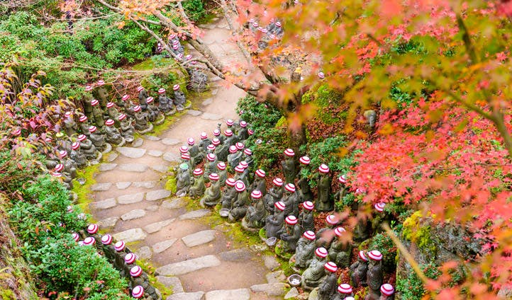 Buddha lined pathways at Daisho in Temple grounds