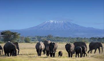 Climb-Kilimanjaro | Bucket List