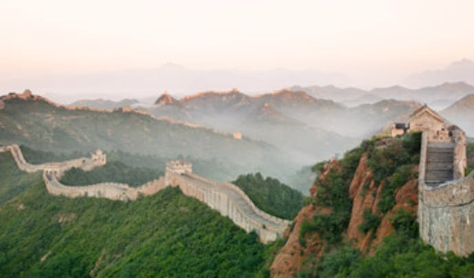 The Great Wall of China Black Tomato