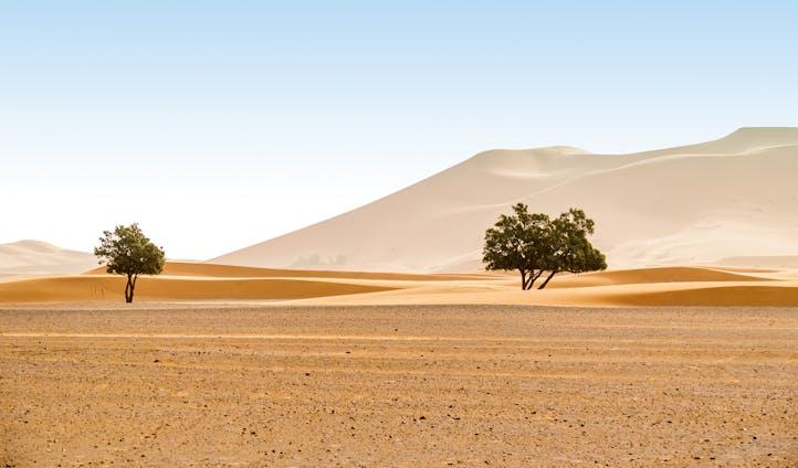 תכנון טיול למרוקו - מרקש