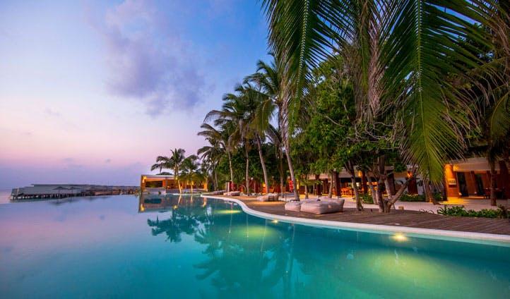 Infinity pool, amilla fushi, the maldives