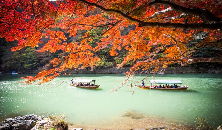 Autumn leaves along the Oi River, Kyoto