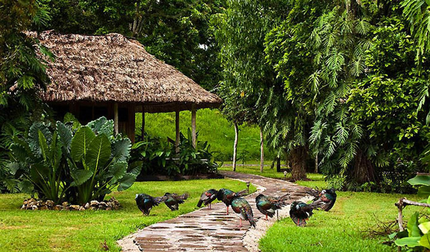 Belize nature holiday