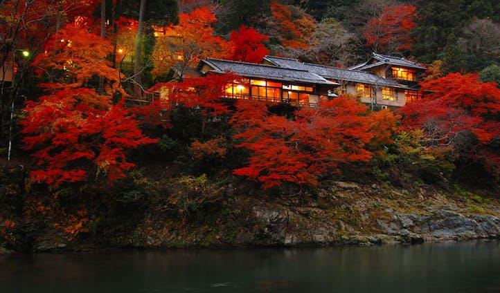 Kyoto's Autumn colours