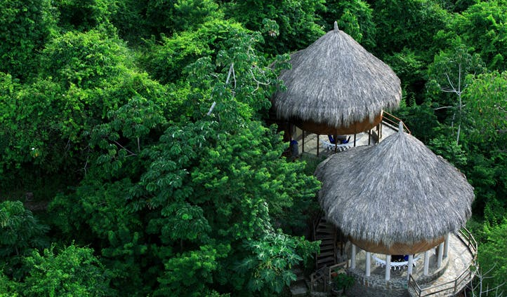 The forests of Tayrona National Park, Colombia