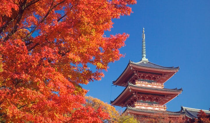 Kyoto in Autumn, Japan