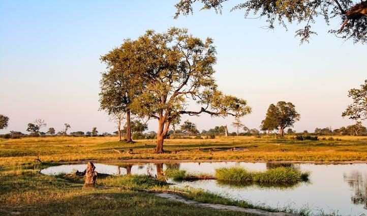 Zimbabwe and Zambia