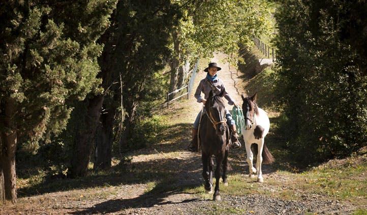 horse treking
