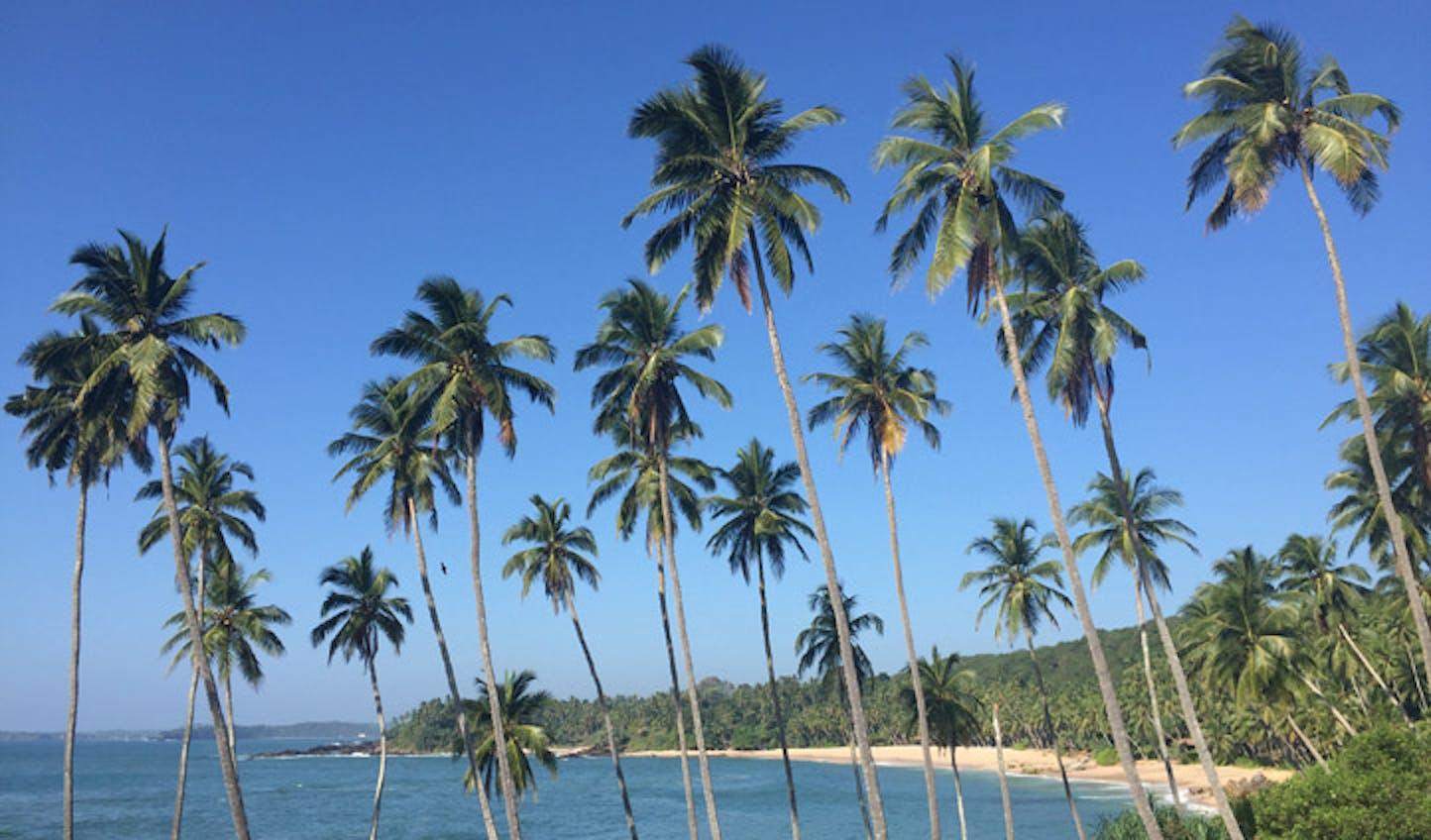 The tropical quintessence of Sri Lanka