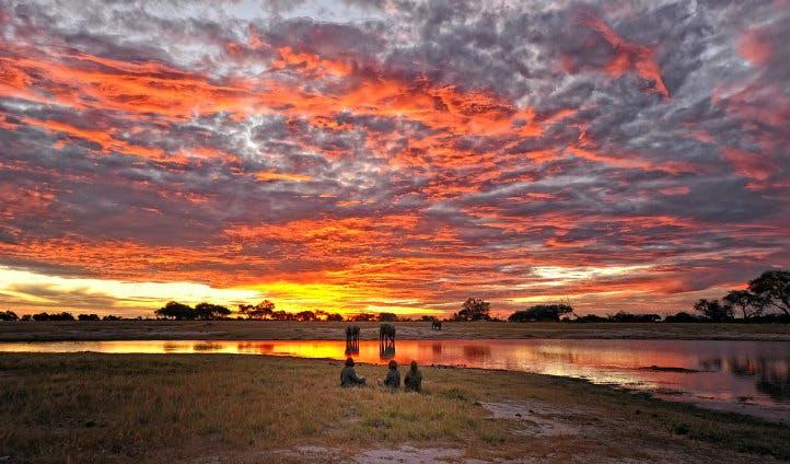 Sunset at Somalisa | Black Tomato