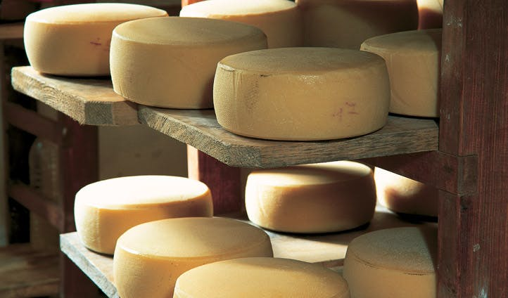 Cheese production in Slovenia