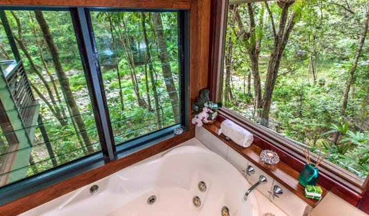 A beautiful bath time view of the rainforest