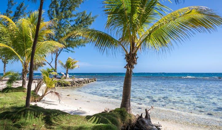 Coral Caye