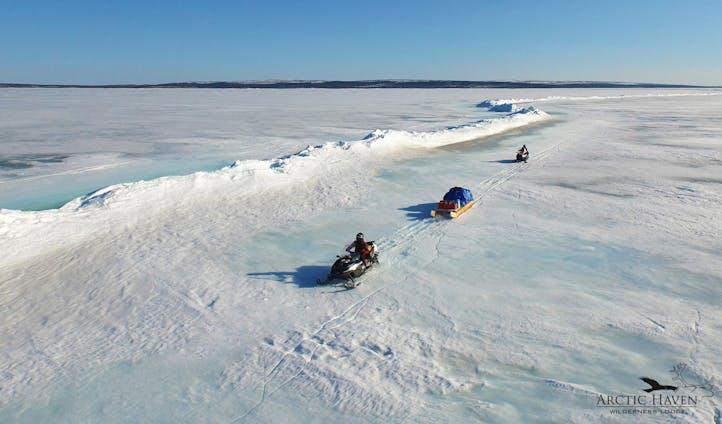Weber Arctic