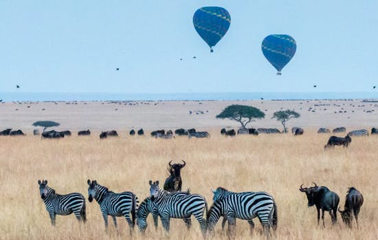 Hot-air balloon experience in Kenya