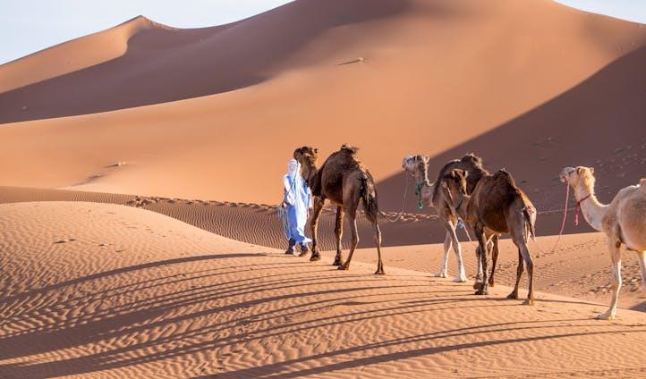 טיול פרטי למרוקו
