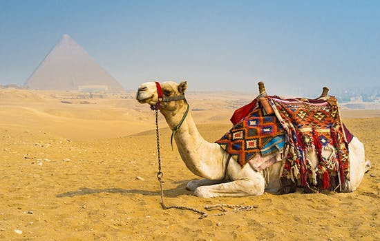More about Egypt