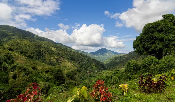 Where to go in Jamaica