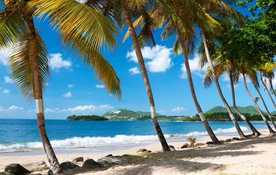 More about St Lucia