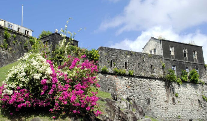 Private tours in Grenada