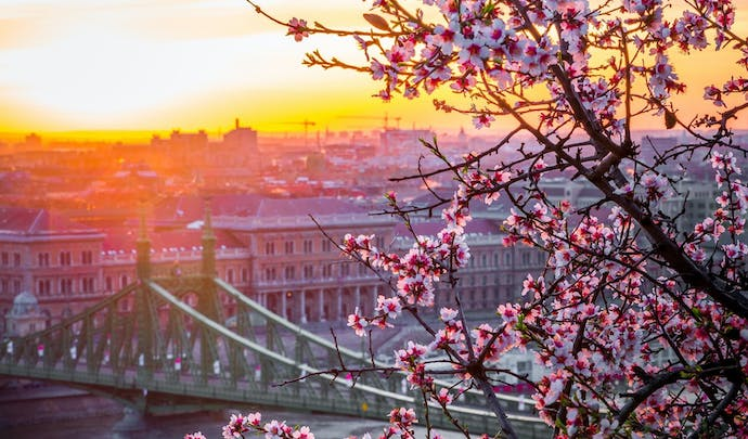 Private tours to Budapest