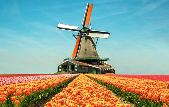 Luxury honeymoons in the Netherlands