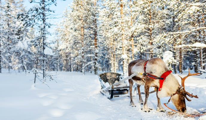 More about Finland