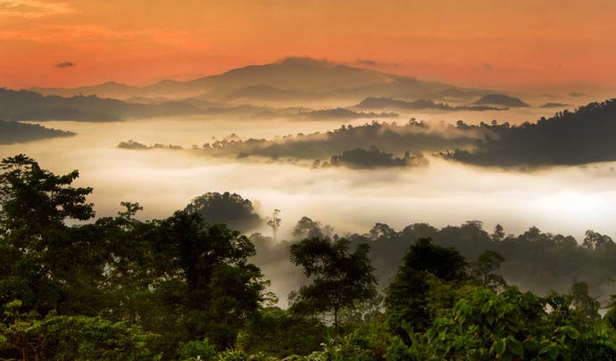 Where to stay in Borneo