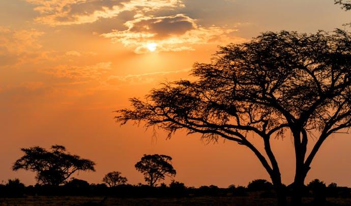 Sleep beneath the stars in Zimbabwe
