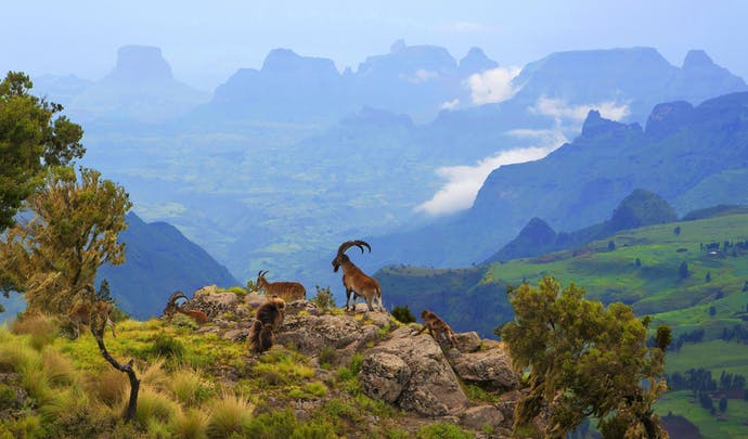 Hotels in the Simien Mountains