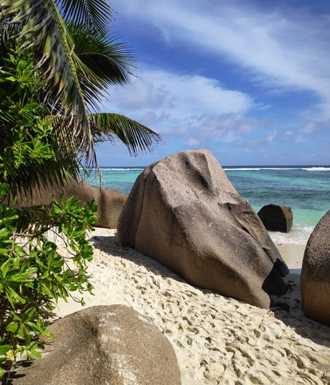 Honeymoon in the Seychelles