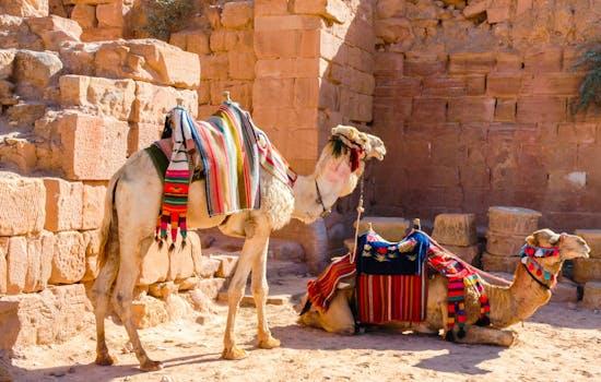 Best hotels in Jordan