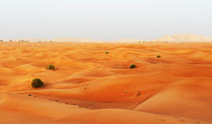 Private desert tours in UAE