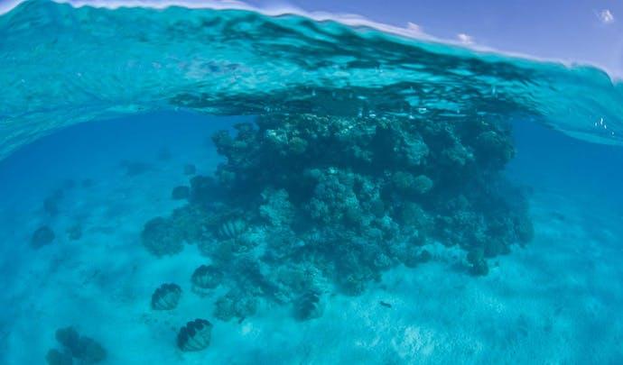 Honeymoons on the Cook Islands