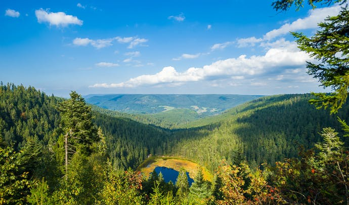 Luxury Holiday in the Black Forest