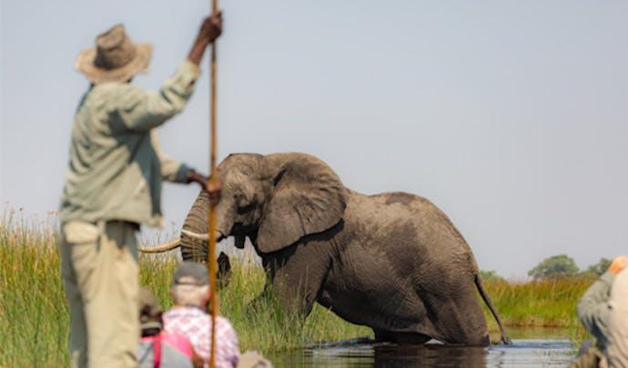 Botswana-honeymoon