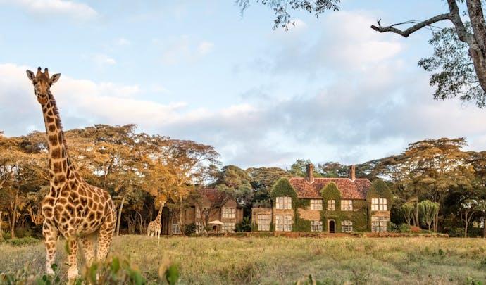 Giraffe Manor, Nairobi in Kenya
