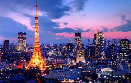 Neon lights in Tokyo skyline