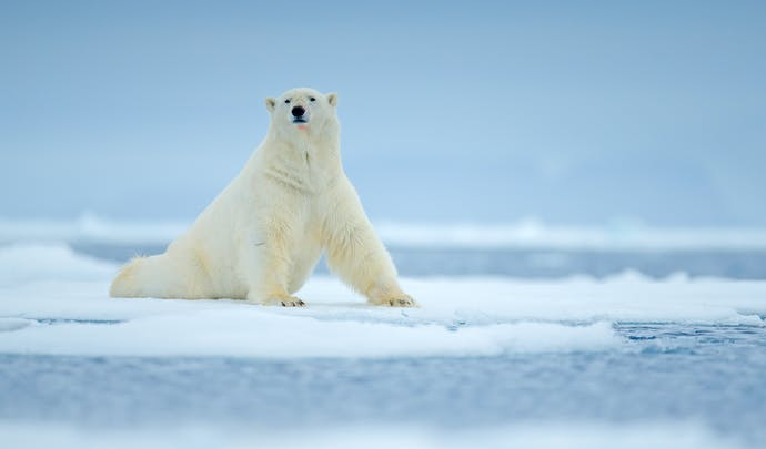 Svalbard in Norway