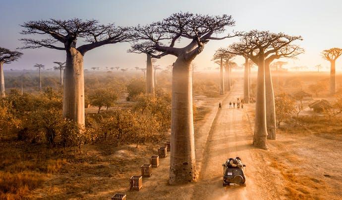 Luxury holidays to Madagascar
