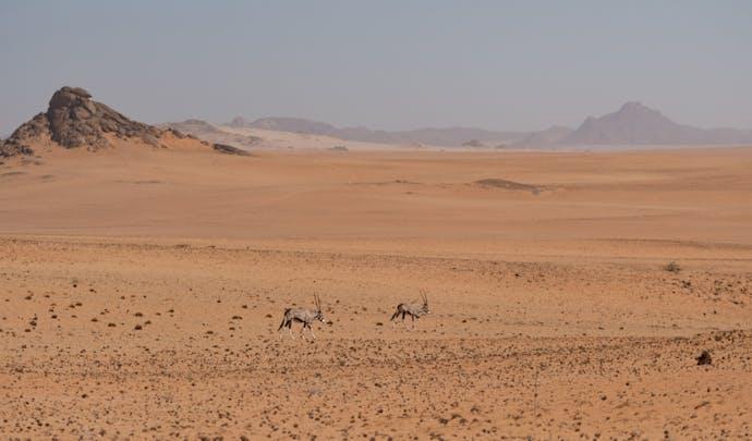 Hartmann Valley, Namibia